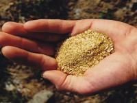 ako môžem získať investičné zlato